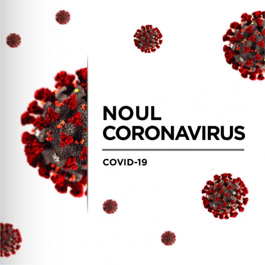 covid_-_copy_0_2